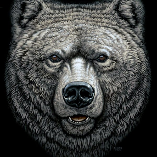 grizzly-new2