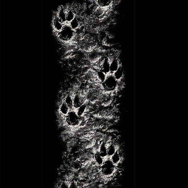 wolf sleeve print LGR3